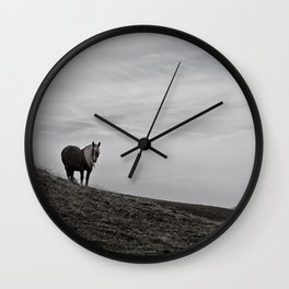 A Pony in the Pyrenees Wall Clock