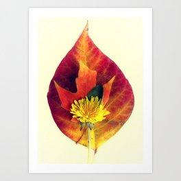 Stackable Leaves I Art Print