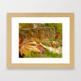 Autumn day 2016 Framed Art Print