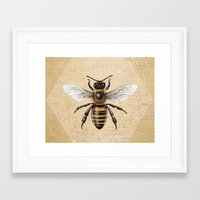 bee Framed Art Prints featuring Bee by Paper Skull Studios