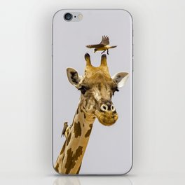Perch of the Wild iPhone Skin