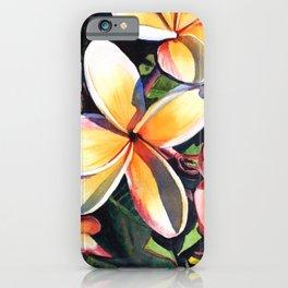 Kauai Rainbow Plumeria iPhone Case
