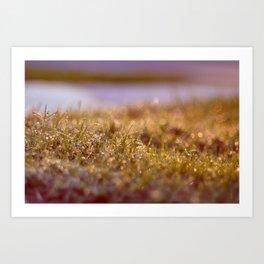l'herbe Art Print