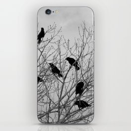 Murder Of Crows - Two iPhone Skin