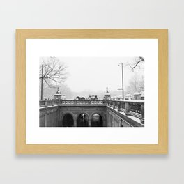 Carriage Ride in Central Park Framed Art Print