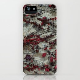 Edera - Castello Banfi - Tuscany iPhone Case