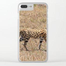 Serval Cat Clear iPhone Case
