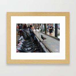 Candem bird Framed Art Print