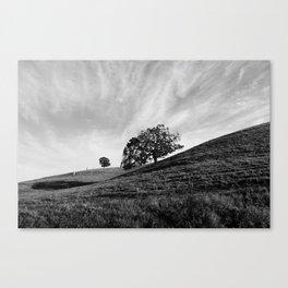 Rustic Serenity Canvas Print