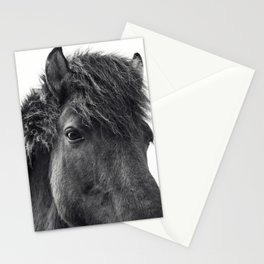 Fuzzy Horse Photograph in Black and White Stationery Cards