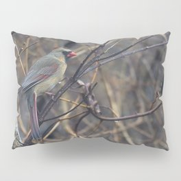 Female Northern Cardinal Pillow Sham