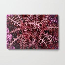 Plants cactus succulent red deep alien planet Metal Print