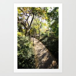 Pathway in Central Park, New York Art Print