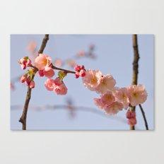 Japanese detail Canvas Print
