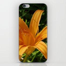 Daylily Summer iPhone Skin