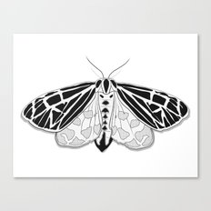 Virgin Tiger Moth Canvas Print