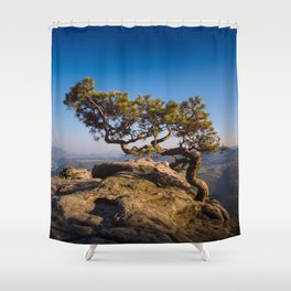Crooked Tree in Elbe Sandstone Mountains Shower Curtain