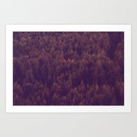 Into the red wood Art Print