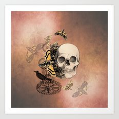 Death's Head Moth Art Print