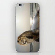 Sea . . . Lion iPhone & iPod Skin