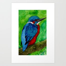 Ruffled Art Print