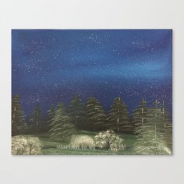 Starry Night - Pure Nature Canvas Print