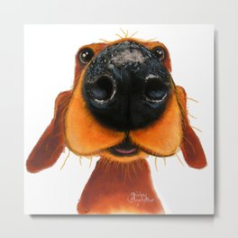 Nosey Dog ' NOSEY NANDO ' by Shirley MacArthur Metal Print