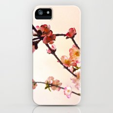Cherry Blossom pink Slim Case iPhone (5, 5s)