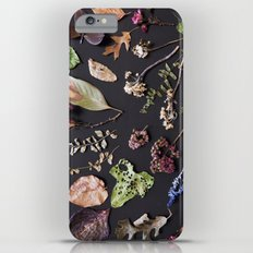Botanical Collection iPhone 6 Plus Slim Case
