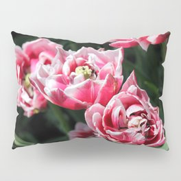 Double Late Peony-Flowered Tulip named Horizon Pillow Sham