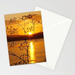 lake ohrid lace Stationery Cards