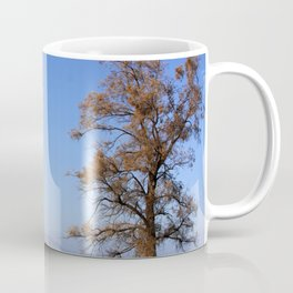 Sea of Galilee Coffee Mug