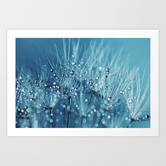 Drops sparkling on a Dandelion- Abstract blue close-up Art Print