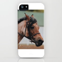Ladybug the Red Roan Pony iPhone Case