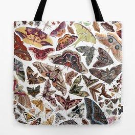 Moths of North America Tote Bag