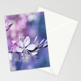 Spring 189 Stationery Cards