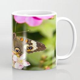 Buckeye Butterfly Coffee Mug