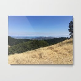San Francisco in the distance Metal Print