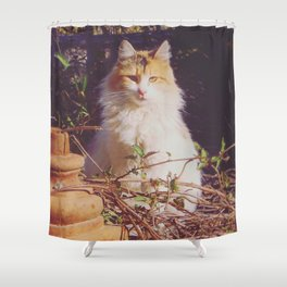 Staring Stranger Shower Curtain