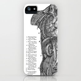 Location of Internal Organs in the Human Body iPhone Case