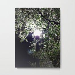 Nightly Blooms Metal Print