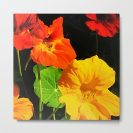 Spring is Here Two Metal Print