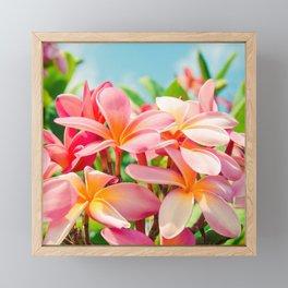 Pua Melia ke Aloha Maui Framed Mini Art Print