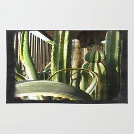 Cactus Garden Blank P4F0 Rug