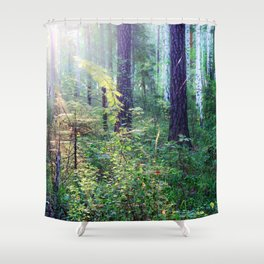 Sunny morning in the forest Shower Curtain