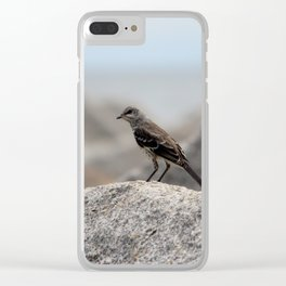 Bird On A Rock By The Sea Clear iPhone Case