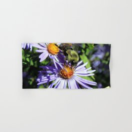 Pollen Dusted Bee on Asters Hand & Bath Towel