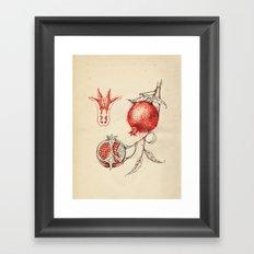 Cabinet of Curiosities No.3 Framed Art Print