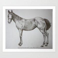 Horse Drawing Art Print