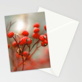 New York Nature II Stationery Cards